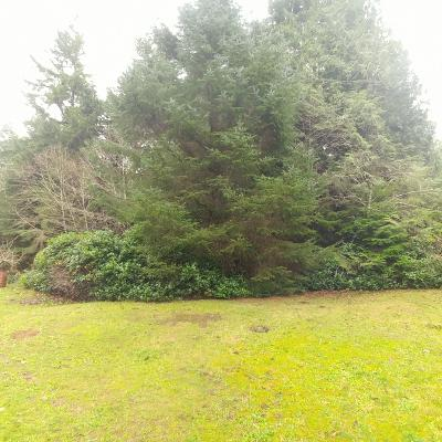 Depoe Bay, Gleneden Beach, Lincoln City, Newport, Otter Rock, Seal Rock, South Beach, Tidewater, Toledo, Waldport, Yachats Residential Lots & Land For Sale: TL100 NE High St