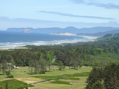 Neskowin Residential Lots & Land For Sale: T/L 1201 Valley View Dr