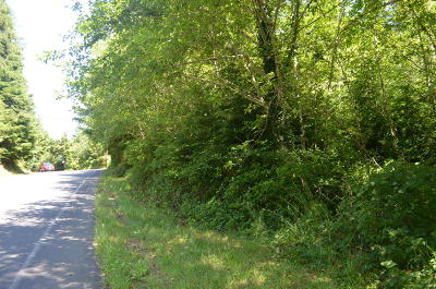 Lincoln City Residential Lots & Land For Sale: TL2800 NE West Devils Lake Rd