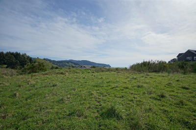 Neskowin Residential Lots & Land For Sale: TL 100 Heron View Dr