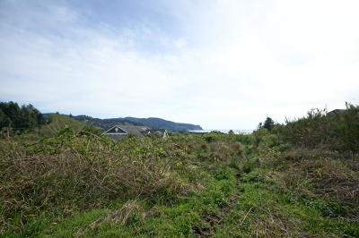Neskowin Residential Lots & Land For Sale: TL 200 Heron View Dr