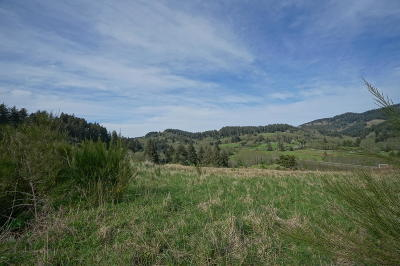 Neskowin Residential Lots & Land For Sale: TL 300 Heron View Dr