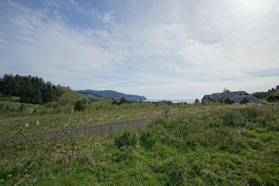 Neskowin Residential Lots & Land For Sale: TL 400 Heron View Dr