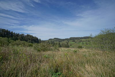 Neskowin Residential Lots & Land For Sale: TL 500 Heron View Dr