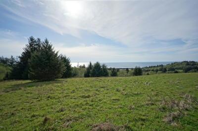 Neskowin Residential Lots & Land For Sale: TL 801 Scherzinger Rd