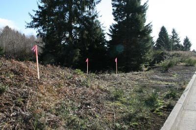 Lincoln City Residential Lots & Land For Sale: Lot 112 NE Voyage Way