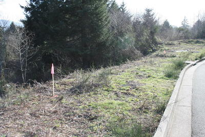 Lincoln City Residential Lots & Land For Sale: Lot 116 NE Voyage Way
