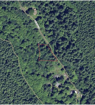 Neotsu, Otis, Rose Lodge Residential Lots & Land For Sale: 300 New Bridge Rd