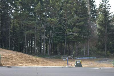 Newport Residential Lots & Land For Sale: Lot #5 Lincoln Ln.