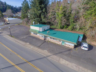 Toledo Commercial For Sale: 580 Hwy 20