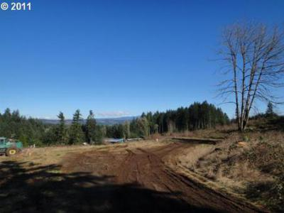 Sweet Home Residential Lots & Land Sold: Valley View #100