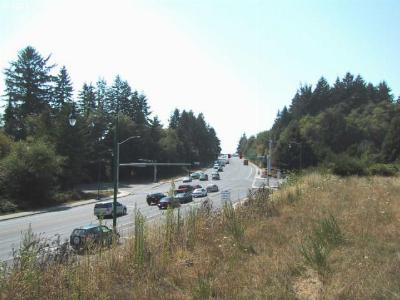 Brookings Residential Lots & Land For Sale: 205 N Bank Chetco Rd