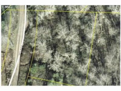 Sweet Home Residential Lots & Land Sold: 163 10th Ave