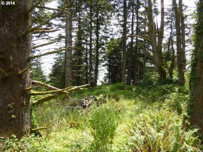 Gold Beach Residential Lots & Land For Sale: Old Hwy 101-Hunter C #100