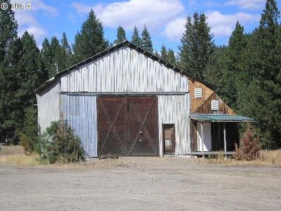 Baker County Single Family Home For Sale: 650 NW Sumpter Valley Hwy