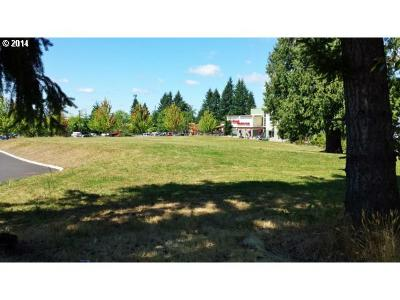 Sandy Residential Lots & Land For Sale: 37133 Highway 26