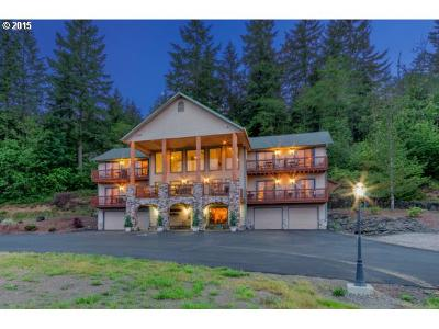 Cowlitz County Single Family Home For Sale: 2846 Spirit Lake Hwy
