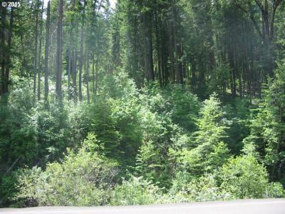 Elgin OR Residential Lots & Land For Sale: $40,000