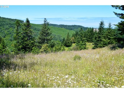 Gold Beach Residential Lots & Land For Sale: 2804 Indian Hills Loop