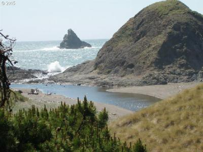 Port Orford Residential Lots & Land For Sale: 1420 King St