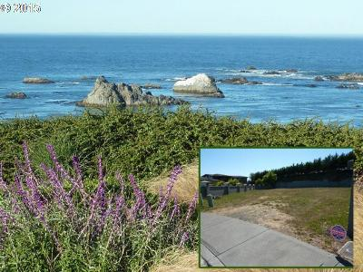 Brookings Residential Lots & Land For Sale: 848 Chetco Point Tr #11