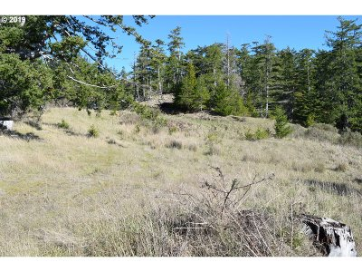 Gold Beach Residential Lots & Land For Sale: 2805 Indian Hills Loop