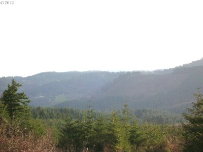 Newberg, Dundee, Mcminnville, Lafayette Residential Lots & Land For Sale: NW High Heaven Rd