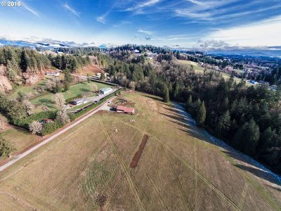 Washougal Residential Lots & Land For Sale: 2508 SE 377th Ave
