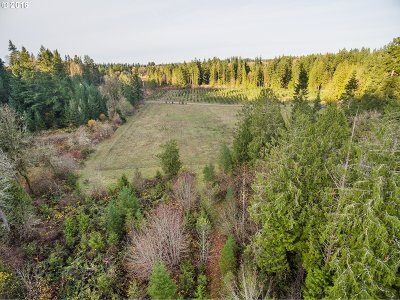 Oregon City, Beavercreek Farm & Ranch For Sale: S Ridge Rd #01100
