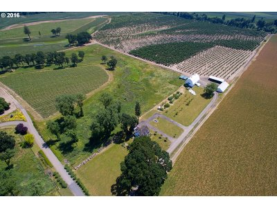 Newberg, Dundee Farm & Ranch For Sale: 22100 Riverwood Rd