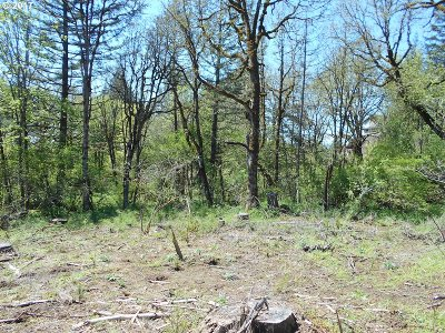 Hillsboro, Forest Grove, Cornelius Residential Lots & Land For Sale: Pit Rd