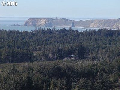 Port Orford Residential Lots & Land For Sale: Vista