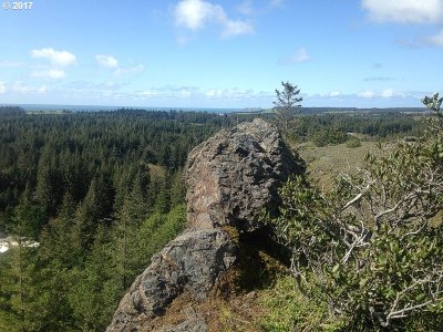 Port Orford Residential Lots & Land For Sale: Highway 101