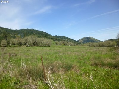 Roseburg Farm & Ranch For Sale: Strickland-Hwy 42