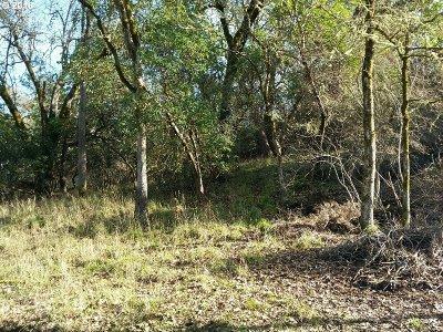 Roseburg Residential Lots & Land For Sale: 1325 SE Laurel Ct