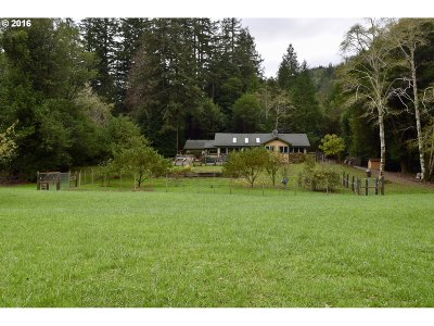Port Orford Single Family Home For Sale: 94561 Elk River Rd