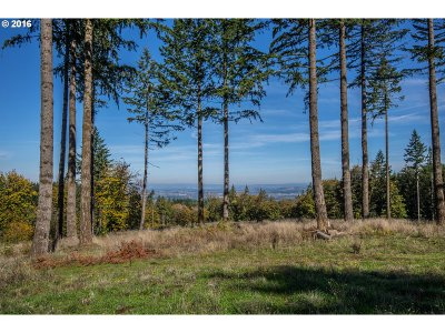Newberg, Dundee Farm & Ranch For Sale: 26280 SW Neill Rd