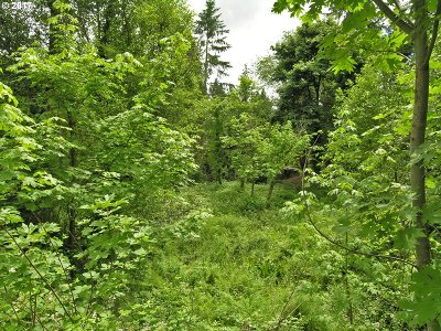 Tigard Residential Lots & Land For Sale: SW McDonald #3
