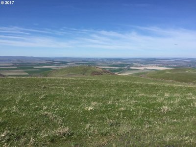 Farm & Ranch For Sale: Emigrant Rd