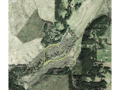 Lorane Residential Lots & Land For Sale: Siuslaw River Rd #J