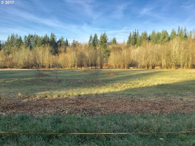 Camas, Washougal Residential Lots & Land For Sale: SE 5th St #2