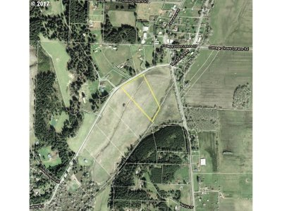 Lorane Residential Lots & Land For Sale: Siuslaw River Rd #B