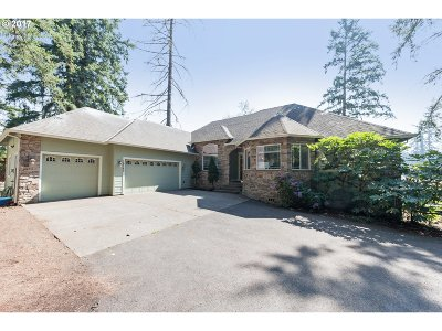 Single Family Home For Sale: 18280 S Janes Ln