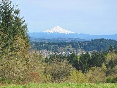 Happy Valley, Clackamas Residential Lots & Land For Sale: 10541 SE Quail Ridge Dr #302