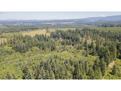 Estacada Residential Lots & Land For Sale: Tumala Mountain Rd
