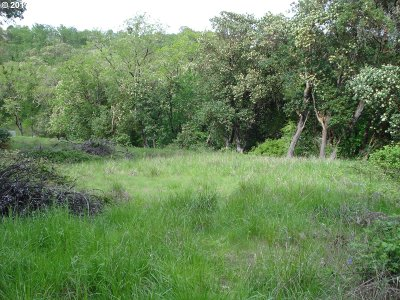 Roseburg Residential Lots & Land For Sale: 1240 NW Sweetbrier Ave #4