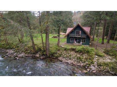 Washougal Single Family Home For Sale: 37935 NE Vernon Rd