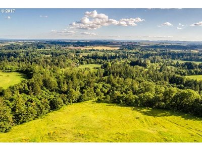 Newberg, Dundee Farm & Ranch For Sale: 34175 NE Wilsonville Rd