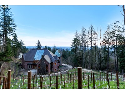 , Portland, West Linn, Lake Oswego Single Family Home For Sale: 14125 NW Germantown Rd