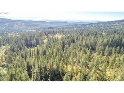 Camas Residential Lots & Land For Sale: Tbd 4